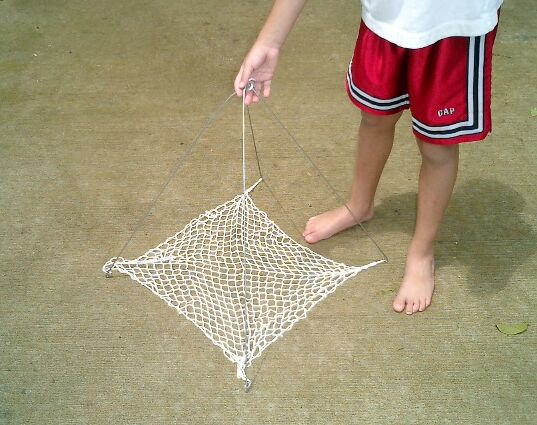 CRAYFISH NET TRAP