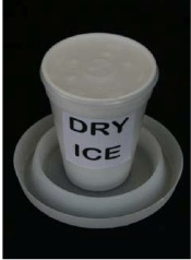BED BUG TRAP WITH DRY ICE LURE