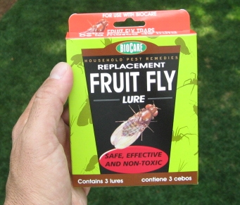 FRUIT FLY TRAP 3PK REFILL